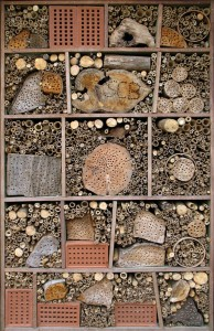 Durrell-Wildlife-Conservation-Trust-insect-hotel 34