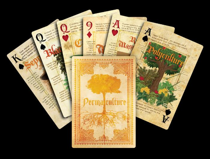 Group-of-cards
