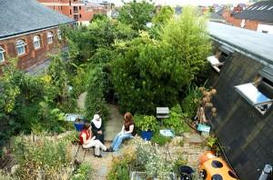 Een tuin op je dak!